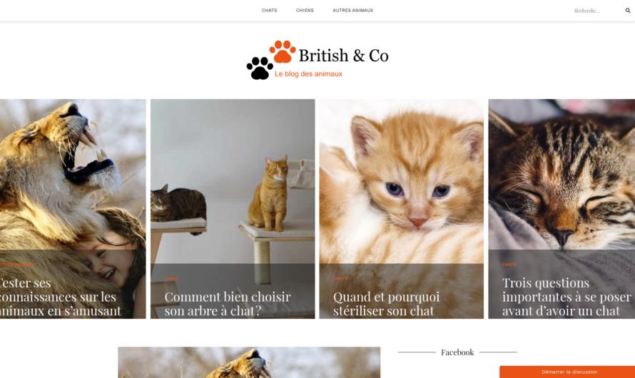 britishandco.com